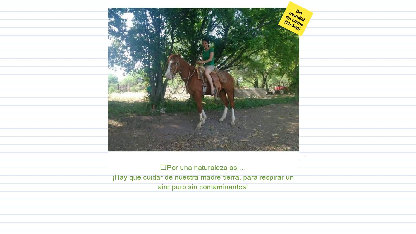 Alondra Reyes Morales TA VII