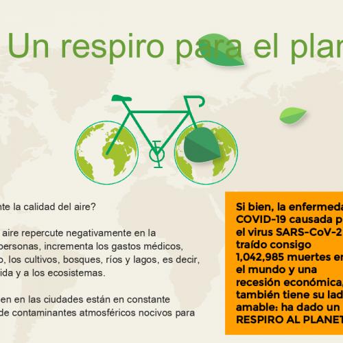 Infografía, Día Mundial sin Coche 1